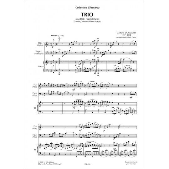 Donizetti Trio pour flûte (violon), fagot (violoncelle) et harpe